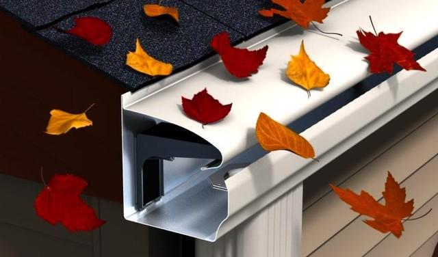 Gutter and Leaves